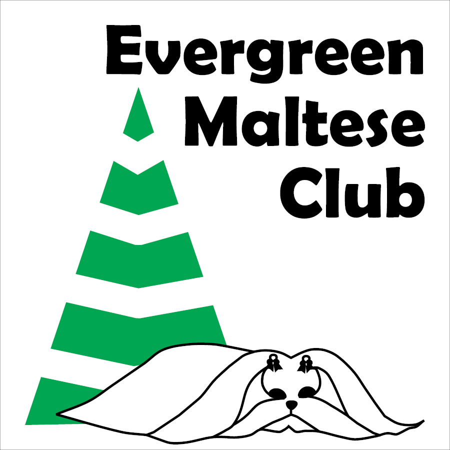 Evergreen Maltese Club
